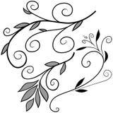 花卉要素f 免版税库存图片