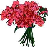 花卉要素,向量例证 免版税图库摄影