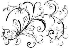 花卉设计要素 向量例证