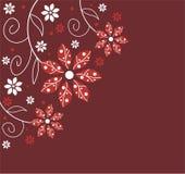 花卉设计 库存图片