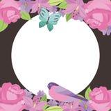 花卉边界装饰标签空白鸟蝶粉花 图库摄影