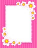 花卉边界-春天和夏天 免版税库存图片