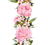 花卉边界-桃红色牡丹花和樱花 重复浪漫横幅 水彩 免版税库存照片