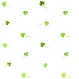 花卉水彩三叶草样式 免版税库存照片