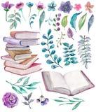 花卉水彩和与美丽的旧书的自然元素 向量例证