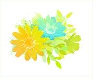 花卉水彩 免版税图库摄影