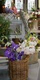 花卉 库存图片