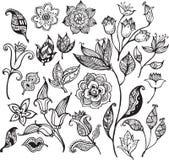 花卉2个抽象设计要素 向量例证