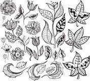 花卉3个抽象设计要素 库存例证