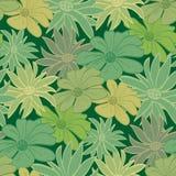 花卉patt无缝的墙纸 免版税库存图片