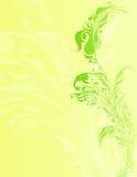 花卉vecter设计 免版税库存图片