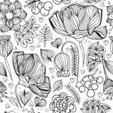 花卉zentangle无缝的样式 成人antistress上色pag 免版税库存照片
