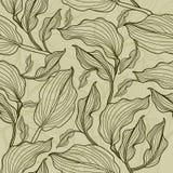 花叶模式无缝的向量 免版税库存图片