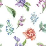 花和叶子无缝的设计的水彩样式在白色背景的 库存照片