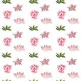 花和叶子无缝的设计的水彩样式在白色背景的 库存图片