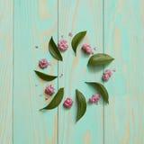 花和叶子框架  免版税库存照片