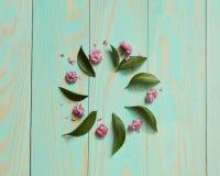 花和叶子框架  库存照片