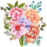 花和叶子的手画水彩组合,隔绝在白色背景 图库摄影