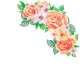 花和叶子的手画水彩组合,隔绝在白色背景 库存照片