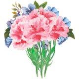 花和叶子的手画水彩组合,隔绝在白色背景 免版税图库摄影