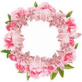 花和叶子的手画水彩组合,隔绝在白色背景 免版税库存图片