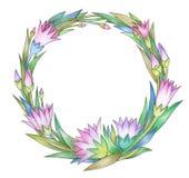 花和叶子,摘要,圈子,花卉框架 库存照片