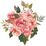 花和叶子,贺卡的手画水彩花束组合,隔绝在白色背景 图库摄影