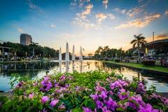 花和喷泉在日落在黎刹公园,在埃尔米塔,马尼拉 免版税库存图片