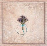 花和木抽象背景精美花束  免版税图库摄影