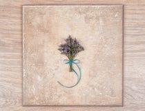 花和木抽象背景精美花束  库存照片