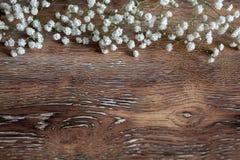 花和木抽象背景精美花束  库存图片
