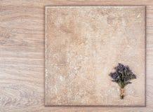 花和木抽象背景精美花束  免版税库存照片