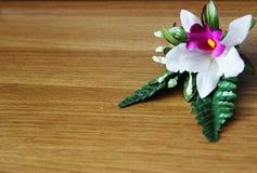 花和木头 免版税库存照片