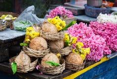 花和椰子在印度 免版税库存照片