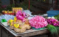 花和椰子在印度 免版税库存图片