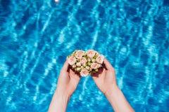 花和水池 库存照片