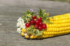 花和浆果花束用玉米 免版税图库摄影