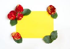 花和玫瑰叶子没有填写角落的嘘 免版税图库摄影