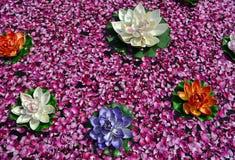 花和玫瑰花瓣在水 图库摄影