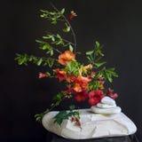 花和石头 免版税库存照片
