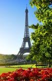 花和艾菲尔铁塔 免版税库存照片