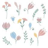 花和花卉元素集 库存照片