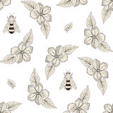 花和蜂无缝的样式葡萄酒板刻样式 免版税图库摄影