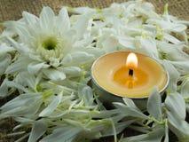 花和蜡烛 免版税库存图片