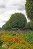 花和被剪切的配件箱结构树(法国) 免版税图库摄影