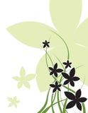 黑花和绿色卷毛背景 免版税图库摄影