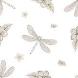 花和蜻蜓无缝的样式 免版税库存图片