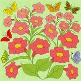 花和蝴蝶颜色背景 图库摄影