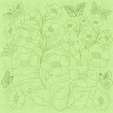 花和蝴蝶绿色背景 库存照片