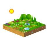 花园绿色 向量例证